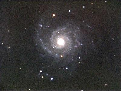 M81 - 10 Minute single exposure [Dan Price]